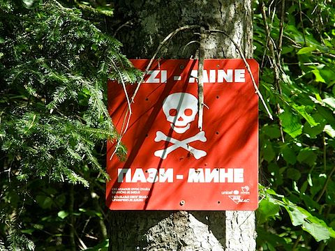 Landmine_warning_sign_in_BiH.jpg