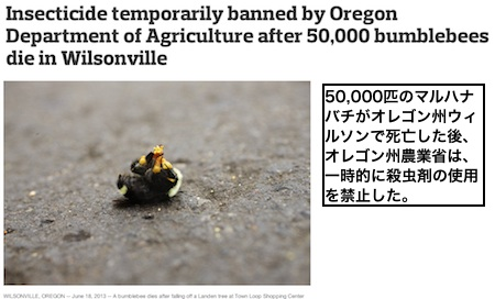 bee-oregon.jpg