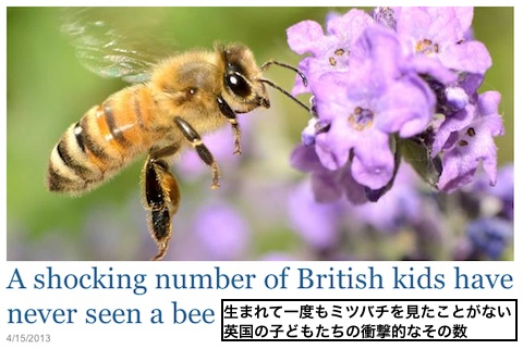 uk-bee-kids.jpg