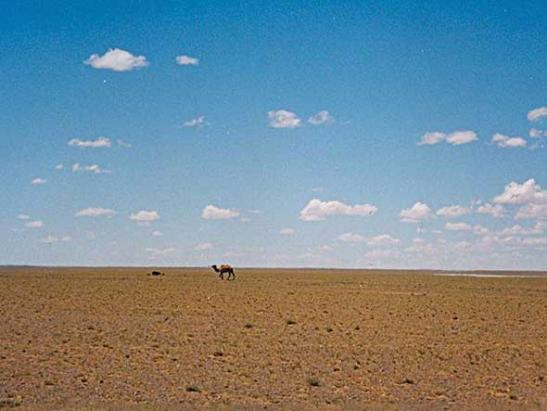 8-chinas-enormous-gobi-desert-is-the-size-of-peru-and-expanding-1400-square-miles-per-year-due-to-water-source-depletion-over-foresting-and-over-grazing.jpg
